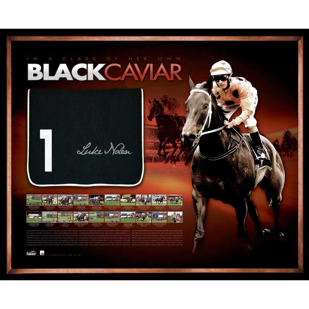 Black Caviar  Limited Edition Signed and Framed 20TH Win Record Breaki...